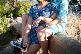 the-engagement-of-clyde-tammy-joy-44
